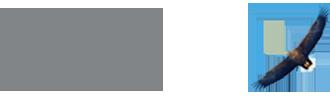 BLS International Services Ltd